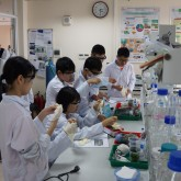 APT JSO – 6: Students make solar cells using natural ingredients